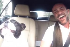 Un perro canta junto a su dueño un tema de Rihanna