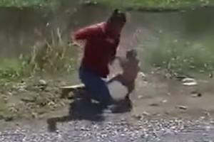 La insólita y violenta pelea entre un hombre y un mono por una moto