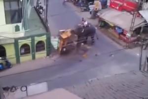Elefante perdió el control en la India