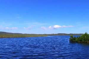 Los secretos que fluyen por los ríos de Chiloé