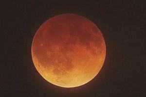 Usuarios reaccionan a la Superluna de Sangre que se apreció en los cielos de Chile
